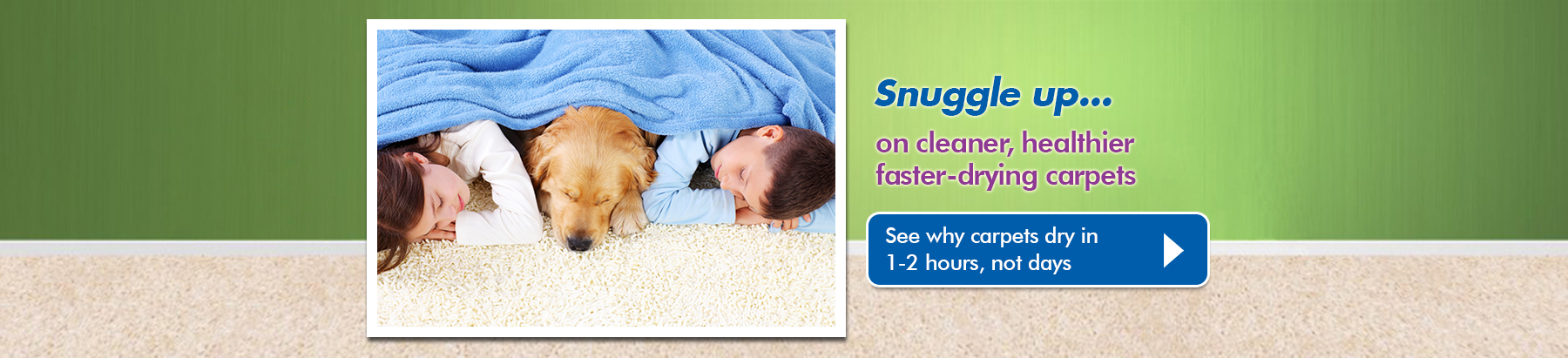Chemdry Carpet Care | Best Carpet Cleaner | Geelong | Clean Carpets